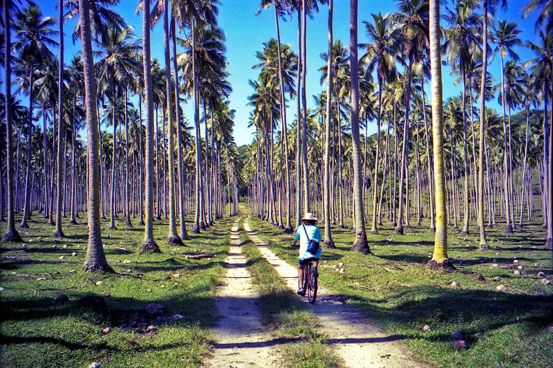 Cycling on the main road on Aore Island.