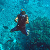 Snorkeling at Lelepa Island.