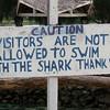Helpful sign at the Blue Water aquarium near Port Vila.