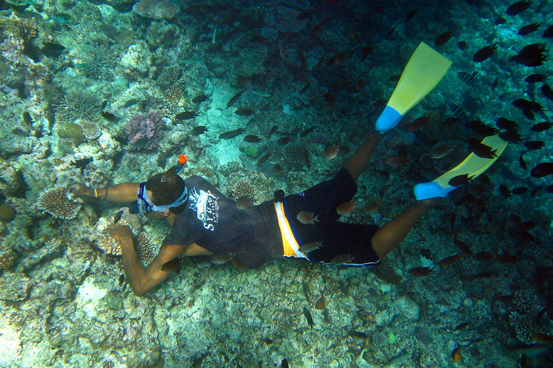 One of the guides snorkeling at Lelepa Island.
