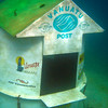 The worlds only underwater post box. There is usually a scuba diver in there and they sell waterproof postcards at the resort.