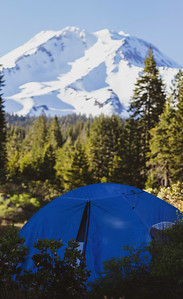 Mt. Shasta Campsite