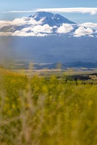 Morning at Mt. Shasta