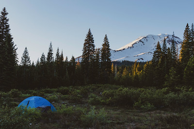 Camping in the Mount Shasta Wilderness