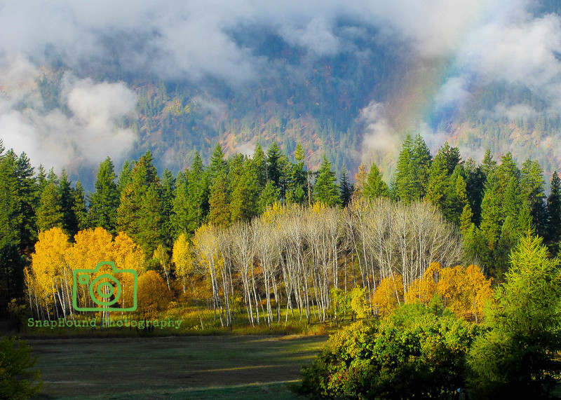 Rainbow over a Fall Alpine Meadow in the Cascades
