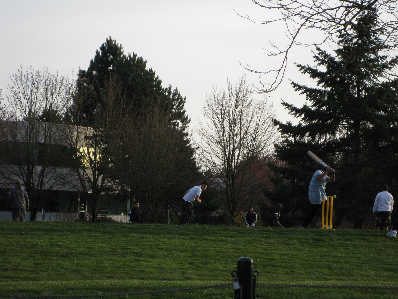 There were several cricket matches going on at the sporting fields on Main campus when I left tonight.
