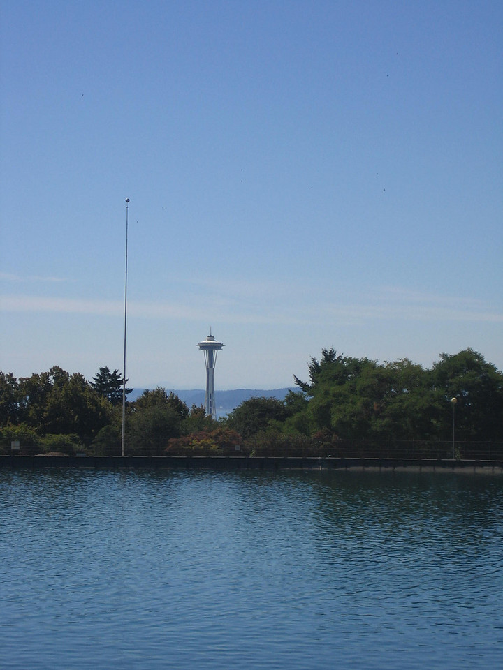 Space Needle view from the Asian Arts Museum