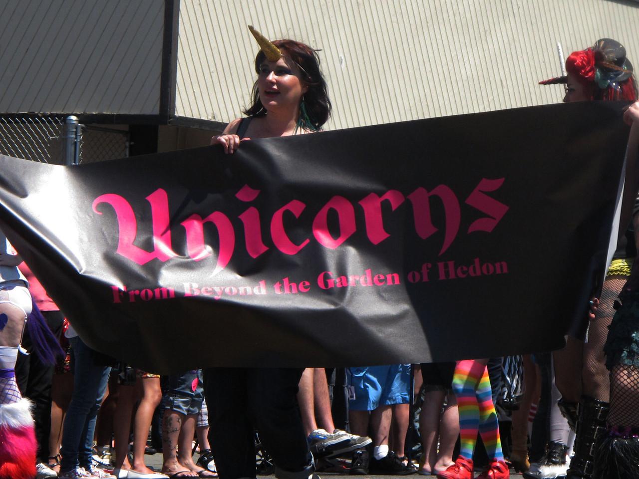 Local gay unicorn chapter?