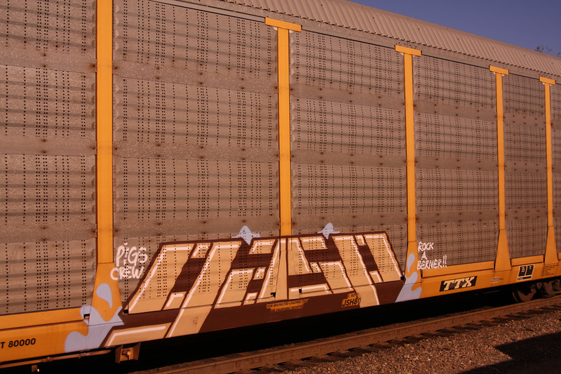 Train grafitti passing by.