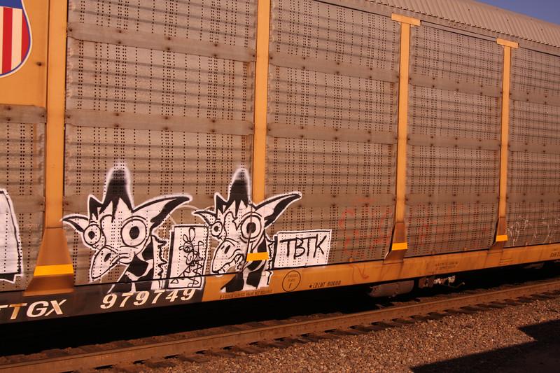 Fun train grafitti passing by.