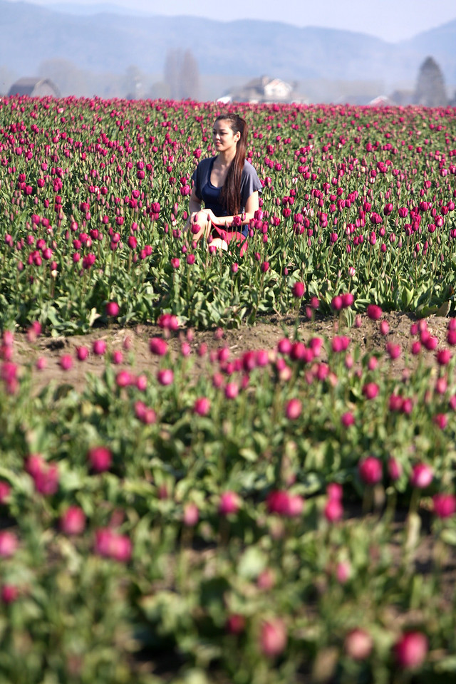 A stranger amongst the tulips.