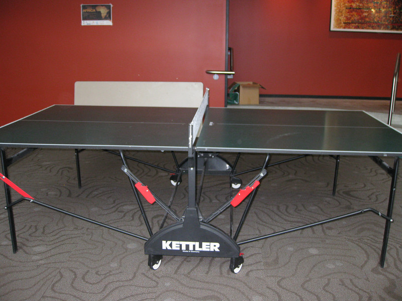 Ping pong table - also becomes drinks/snacks table when we have parties.