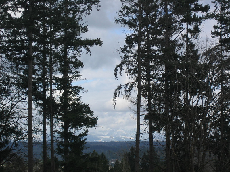 Note the mountain range (the Cascades) in the background.