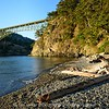 Deception Pass Bridge and driftwood