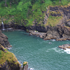 ~ Harts Cove ~