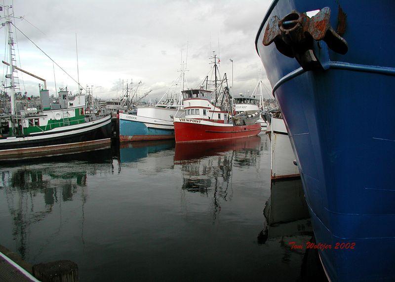 Fisherman's Terminal Seattle Washington
