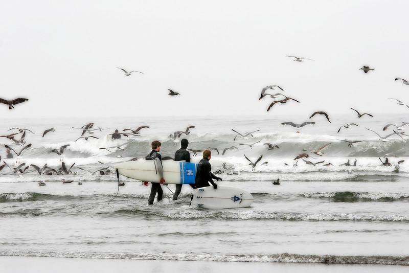 Surfers at Westport Washington