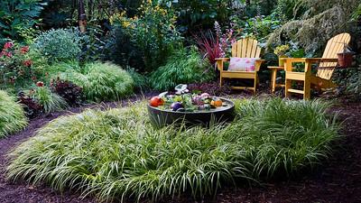 Gail's garden in Portland