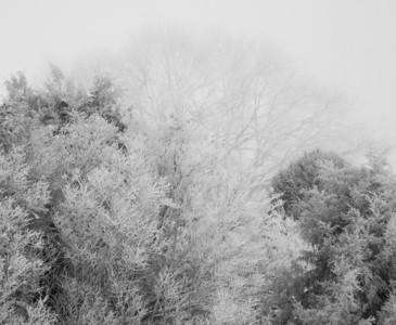 Palouse Falls Spring