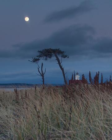 White house - moon light