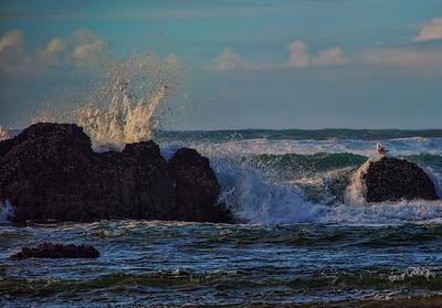 Haystack Rock Wave