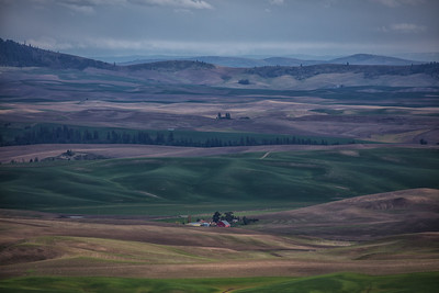 Overview of Palouse Spring
