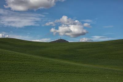Palouse wheat field Steptoe Butte background 4-23-17