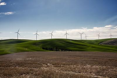 Palouse spring wheat wind turbines 3-23-17