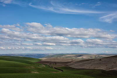 Palouse vista wide angle spring day Hwy 127 3-23-17