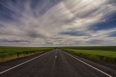 Hwy 28 between Odessa and Harrington WA wheat fields either side 5-31-15