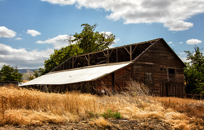 Old barn Russell Creek Rd Walla Walla wheat field foreground 7-22-16