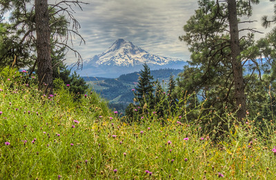 Mount Hood from Hood River, Oregon, USA