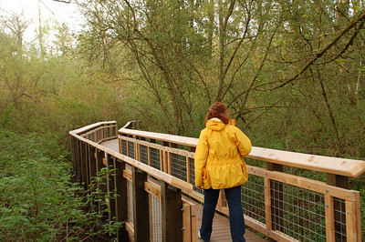 West Hylebos Wetlands, Federal Way