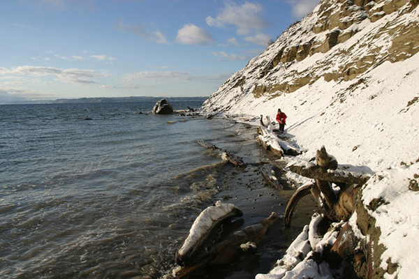 High tide, Double Bluff beach, Freeland snow, January 28, 2008