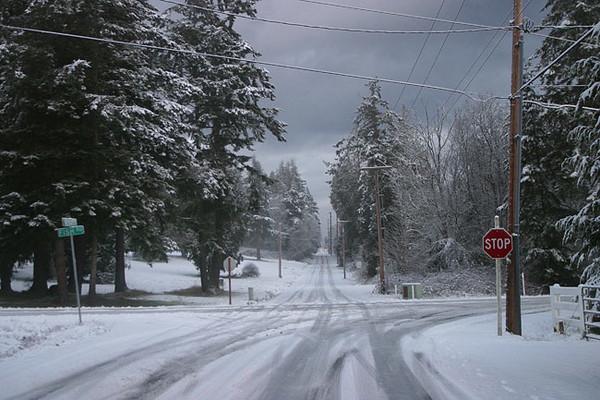 Freeland snow, January 28, 2008