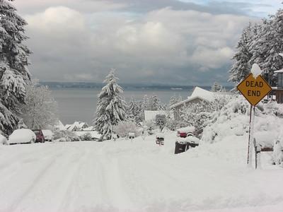 Neighborhood - Day 4. More snow fell overnight.    December 22, 2008