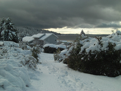 The Big Snow. December 22, 2008