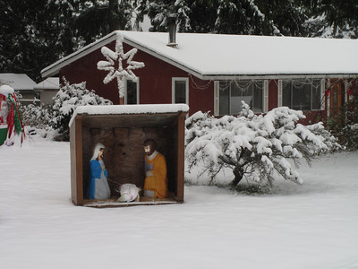 Only 340 days left till Christmas. Day 2. First snow of 2012. Freeland, Whidbey Island. January 18, 2012