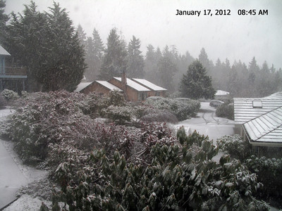 Whidbey Winter 2012