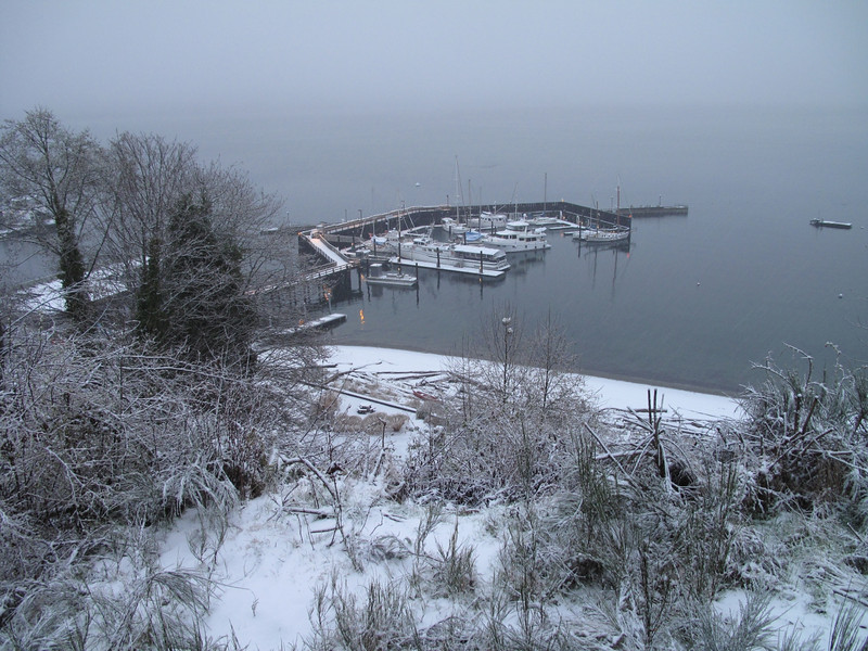 View of Langley Marina, Whidbey Island. March 22, 2013