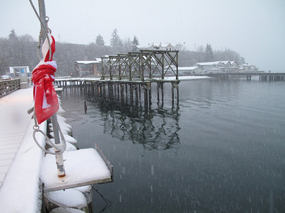 The dive flag is furled tight.  Langley Marina, Whidbey Island. March 22, 2013