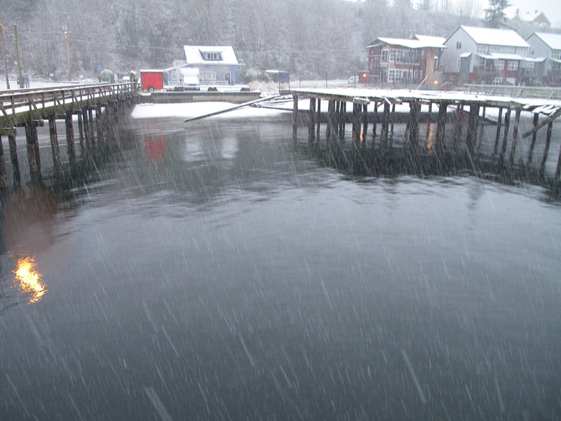 Still snowing. Langley Marina, Whidbey Island. March 22, 2013