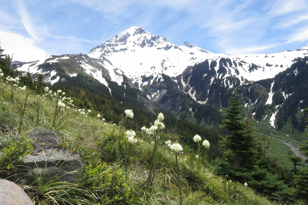 Wide View of Mount Hood and the Valley Below