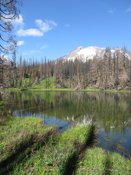 Mount Adams and Looking Glass Lake - Washington - August 2013. Remnants of the 2012 Cascade Creek Fire.