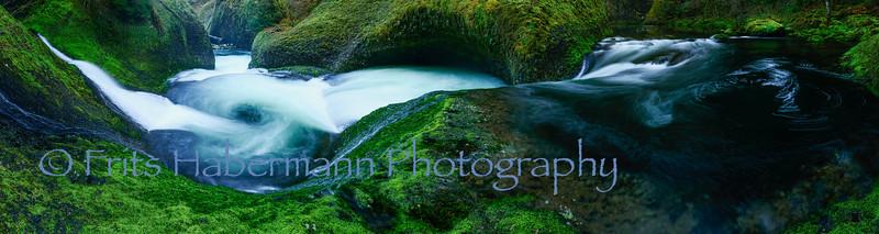 Nature's Whirlpool