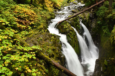 Early Autumn at Sol Duc Falls