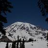 Tree Frame for Mt. Rainier