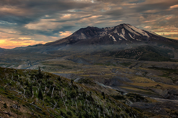 Mt. St. Helens, Washington. Blown down trees are still visible in the foreground. When the volcano erupted on May 18, 1980, the blast leveled 230 square miles of forest and killed nearly everything in it's path in less than five minutes.