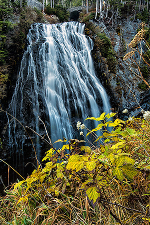 Narada Falls, Mt. Rainier National Park
