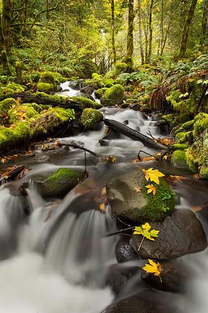 Dry Creek Tumbles